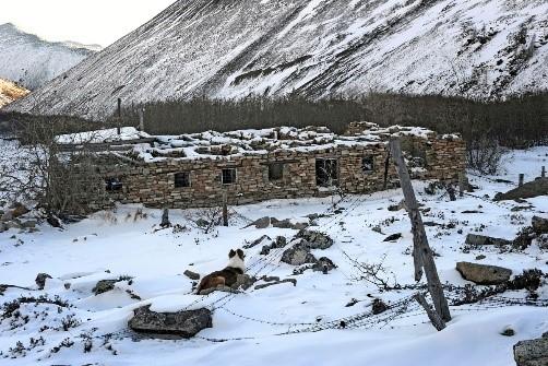 Russian North Polar Information 64