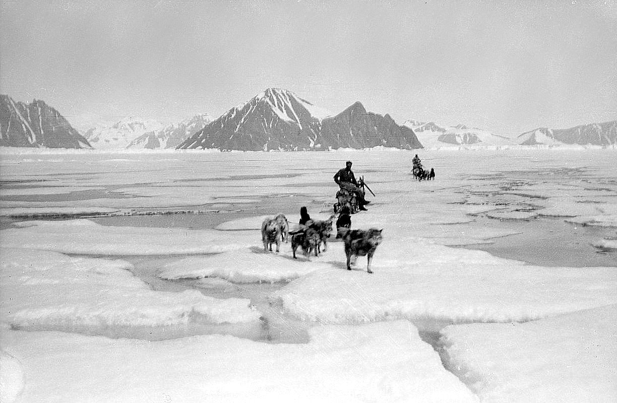 Sledges on sea ice. (Photo. W.E. Hampton, P51_8_H216)