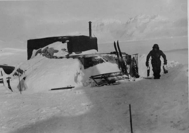 Russian North Polar 64